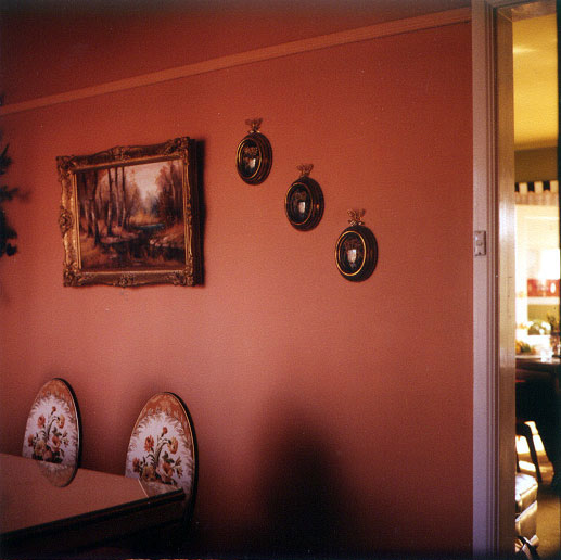 Jane Burton | Glen Eira Lounge Room III 1998 | Type C photograph | 48 x 48 cm | Glen Eira City Council Art Collection