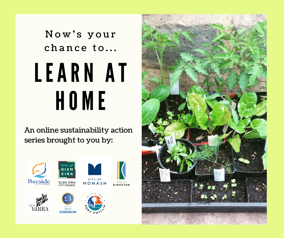Now's your chance to learn at home. An online sustainability action series brought to you by Bayside City Council, City of Glen Eira, City of Monash, City of Kingston, City of Yarra, City of Stonington and City of Port Philip.